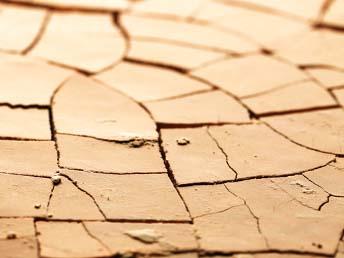 肌のバリア機能低下 乾燥肌と敏感肌