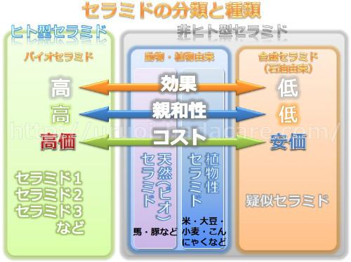 セラミドの分類と種類 図解