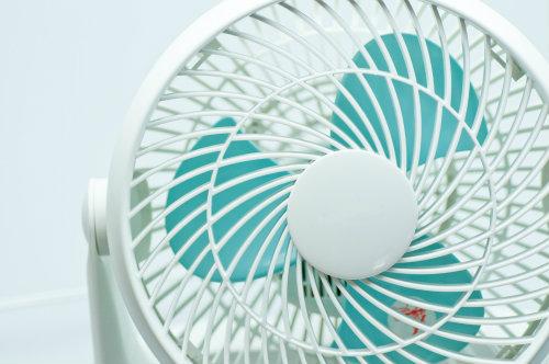 扇風機 乾燥肌 風の影響