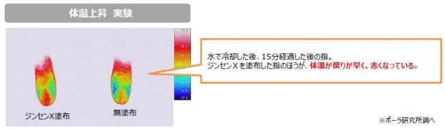ジンセン 体温上昇作用